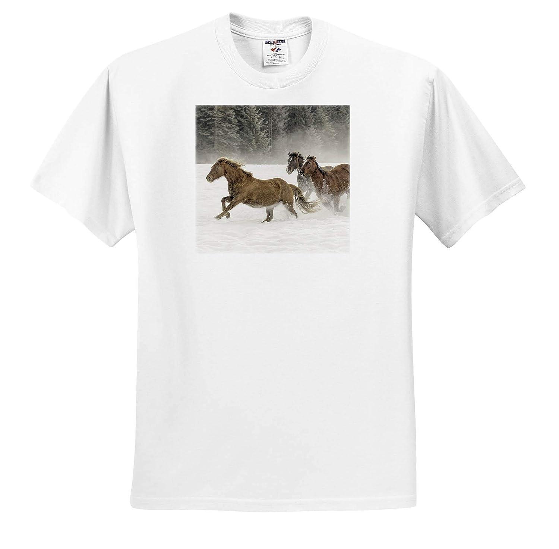 Montana Horses 3dRose Danita Delimont Adult T-Shirt XL Kalispell Horses in Winter ts/_314904