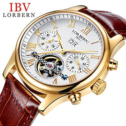 Mens Mechanical Brown Leather - Swiss Brands Mens Automatic Mechanical Wrist Watches Gold Silver Stainless Steel Date Skeleton Watch (Brown Leather)
