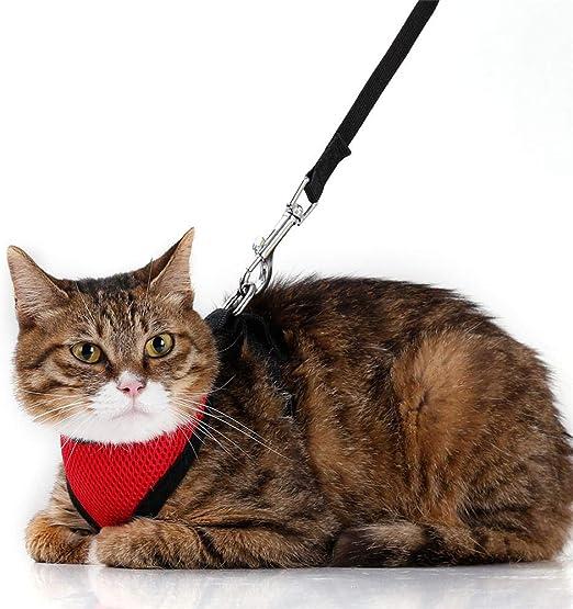 yangyingli Correa de Gato Chaleco de Cuerda arnés arnés Correa de Gato@Rojo_S: Amazon.es: Productos para mascotas