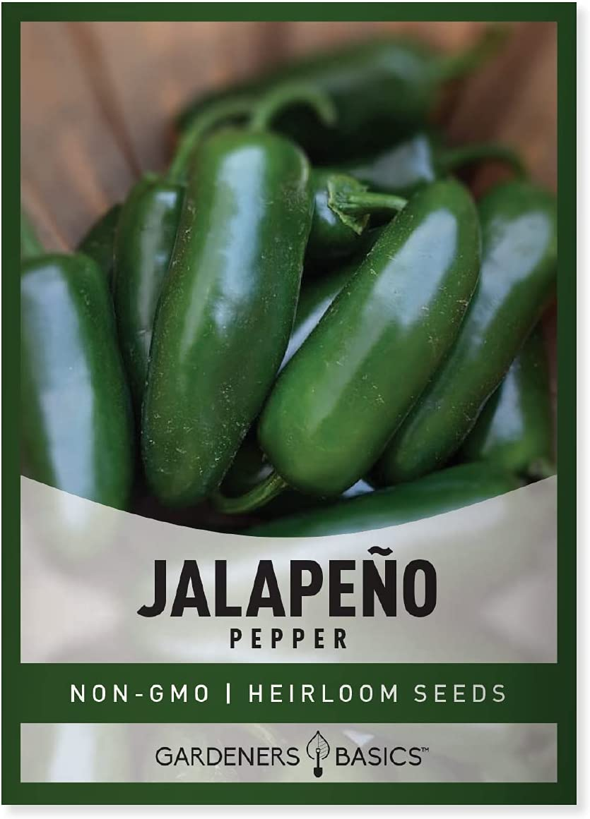 5+ seeds Heirloom Vegetable Seeds! Jalapeno Conchos Chili Graines