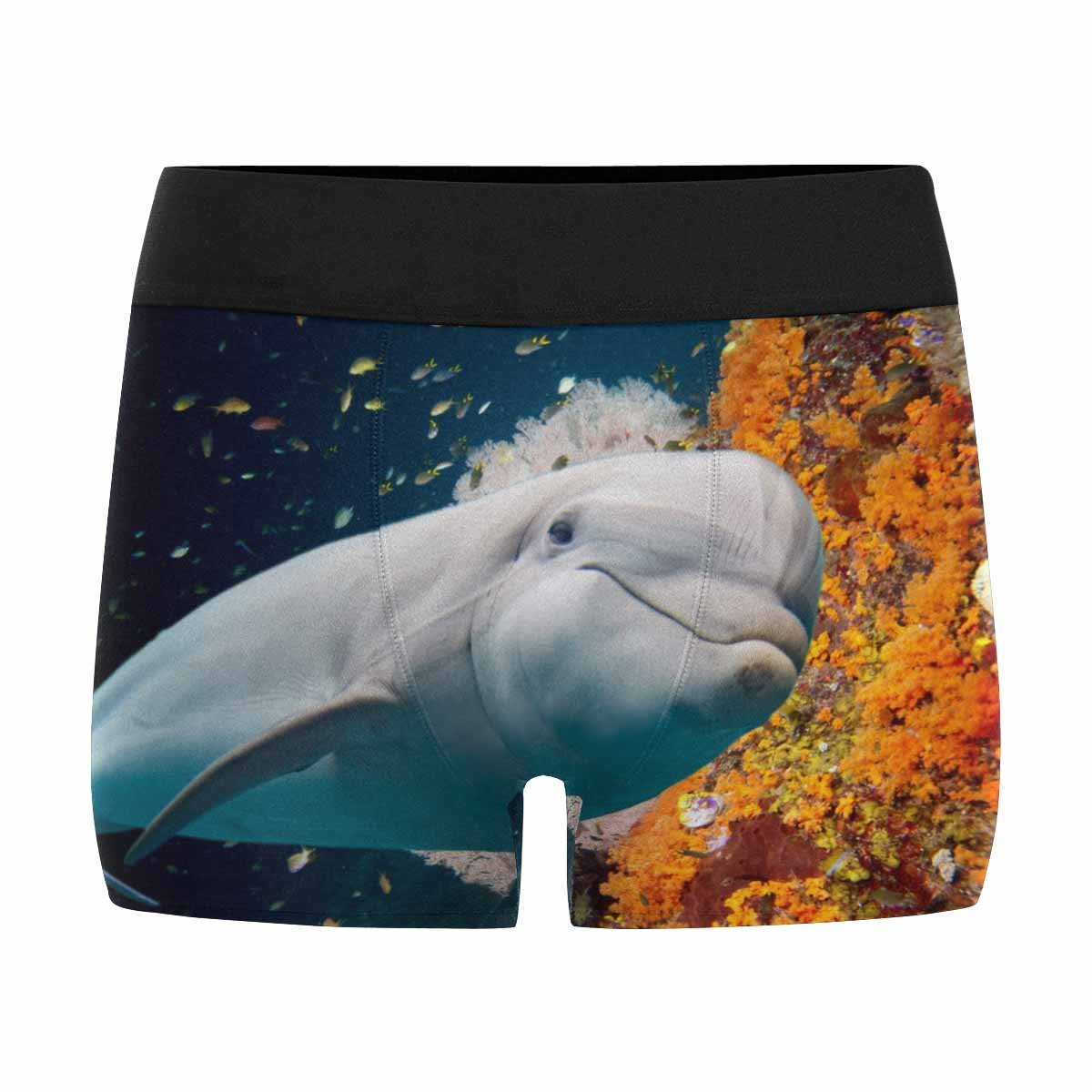 XS-3XL INTERESTPRINT Custom Mens Boxer Briefs Dolphin Underwater on Reef Looking at You