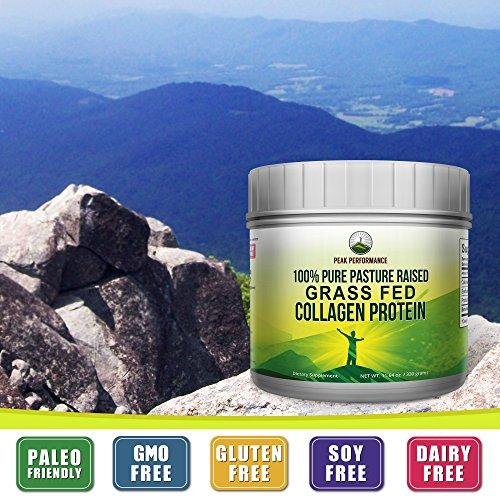 Pure Pasture Raised Grass Fed Hydrolyzed Collagen Protein by Peak Performance. Paleo Friendly, Gluten & Dairy Free Collagen Peptides (Unflavored Collagen) by Peak Performance Coffee (Image #3)