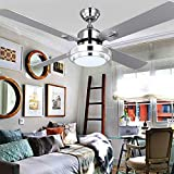 RainierLight Silver Stainless Steel Ceiling Fan Household Decorative for Indoor with Remote Control LED 3 Changing Light Chandelier Lighting Fixture (42inch)