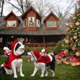 Royal Wise Running Santa Christmas Pet Costumes, Santa Dog Costume Dog Apparel Party Dressing Up Clothing for Dogs Cats Clothes Pet Outfit
