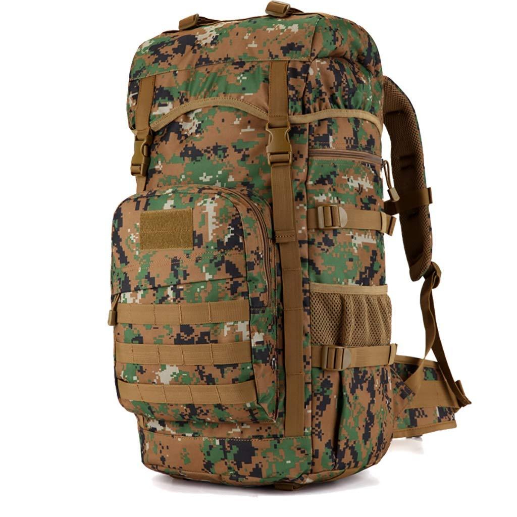 人気特価 55L男性と女性の大容量のショルダーバックアウトハイキングバックパック荷物袋 D)、5色 (色 (色 : B D) B07HTBBB98 B B, オオサトグン:e49e0f51 --- arianechie.dominiotemporario.com