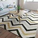 HOMEE Carpet Living Room Coffee Mats Bedroom Bedside Blankets Simple Home Washable,E,120X170Cm(47X67Inch)