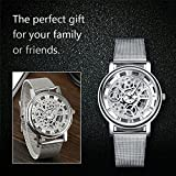 Daimon Mens Watches with Skeleton Face Wrist Watches for Men