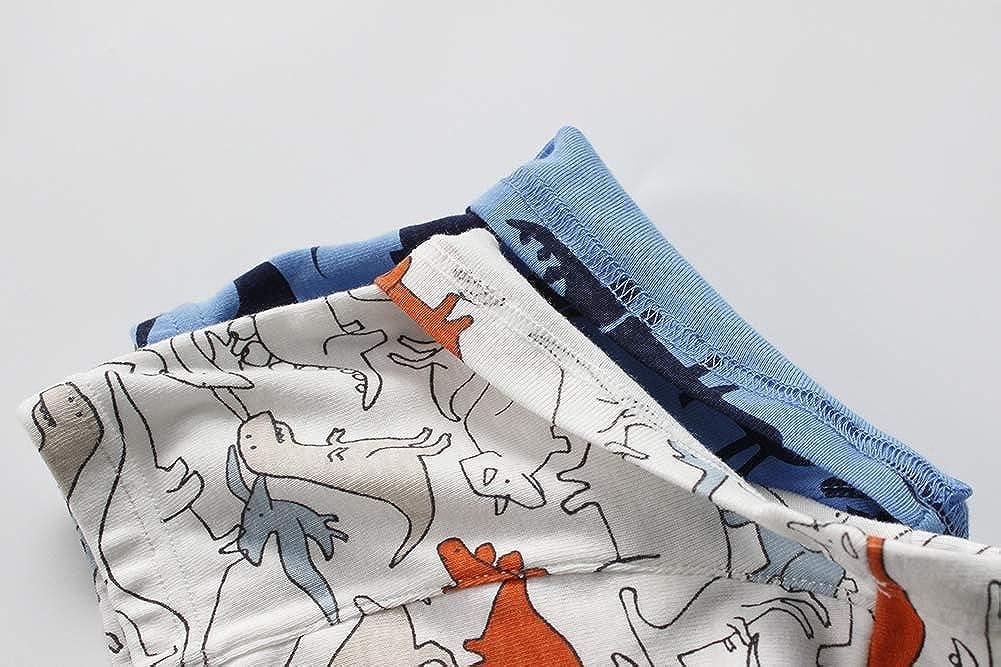 2-8Y AJOMAN Boys Underwear 3-Pack Dinosaur Boxer Briefs Toddler Little Boys Panties
