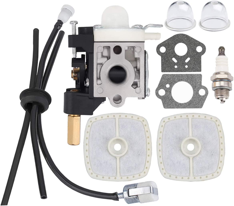 HIPA RB-K70A carburador con batería para Kit de mantenimiento RePower para Desbrozadora recortadora ECHO GT230 GT231 PAS230 PAS231 PE230 PE231 PPT230 PPT231 SRM230 SRM231: Amazon.es: Jardín