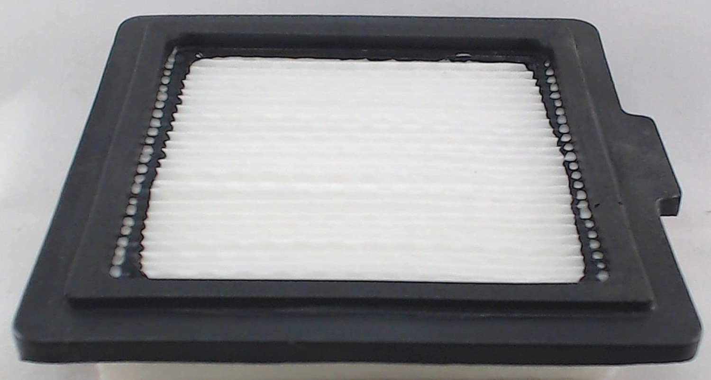 Bissell Flip It Air Filter, Model 5200, 2036705