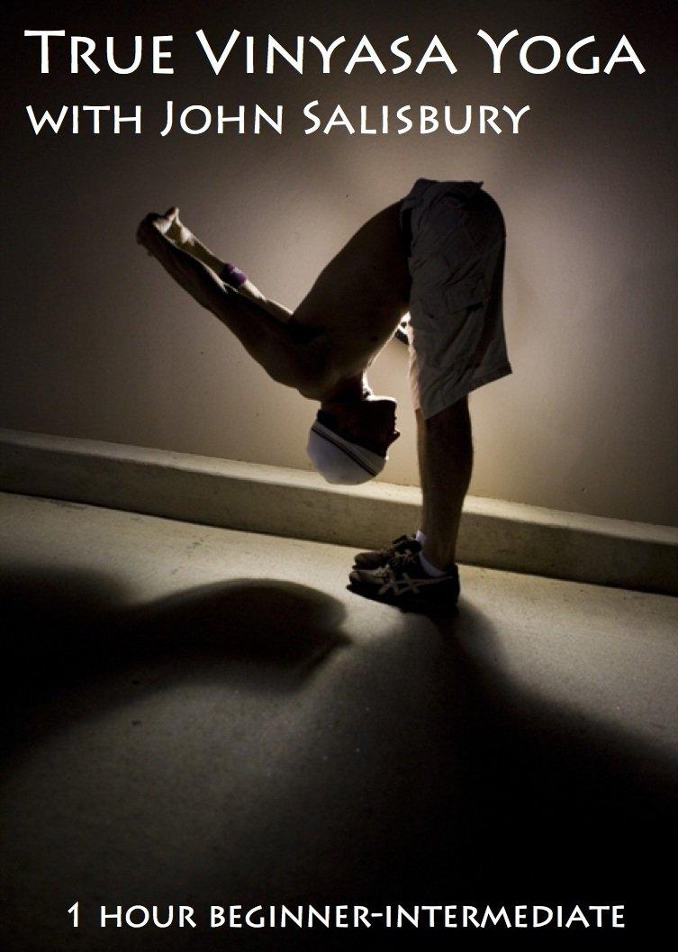 Amazon.com: True Vinyasa Yoga with John Salisbury: John ...
