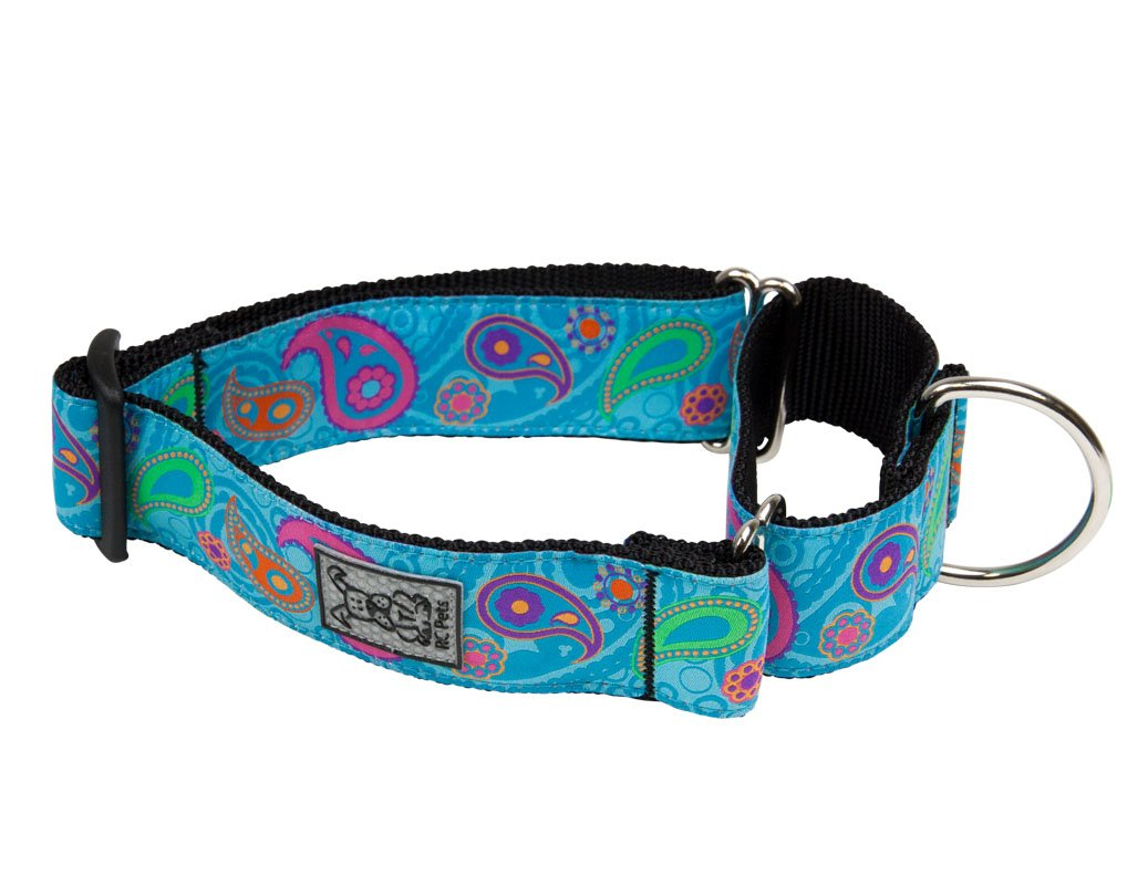 RC Pet Products 1 1/2 Inch All Webbing Martingale Dog Collar, Medium, Tropical Paisley