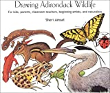 Drawing Adirondack Wildlife: For Kids, Parents, Classroom Teachers, Beginning Artists, and Naturalists