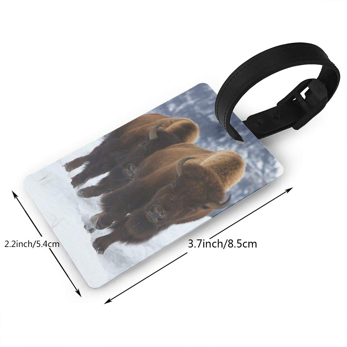 Buffaloes Cruise Luggage Tag For Travel Bag Suitcase Accessories 2 Pack Luggage Tags