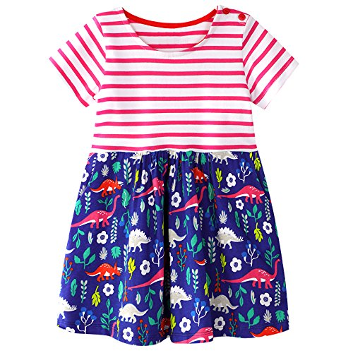 VIKITA Toddler Girl Floral Embroidery Cotton Sleeveless Sundress Baby Girls Summer Casual Dresses 2-8 Years (6T, JM6847) ()