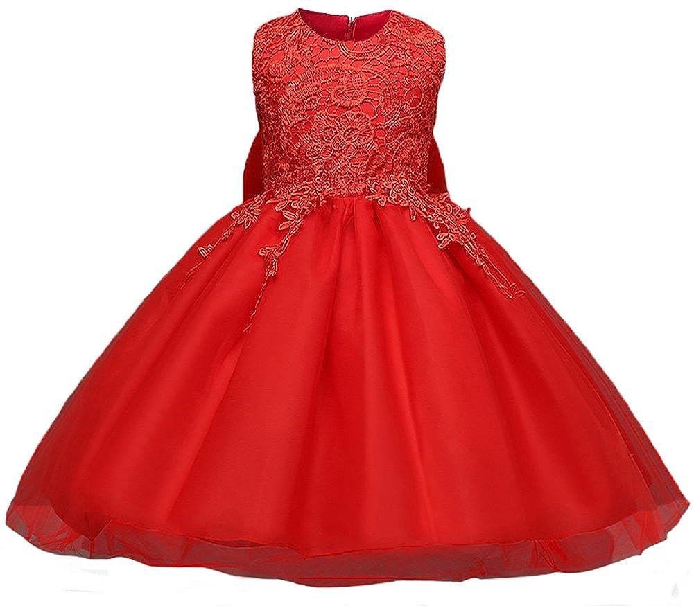 Myosotis510 Embroidered Lace Flower Girls Dress Princess Evening Party Sundress Fit 6M-6T