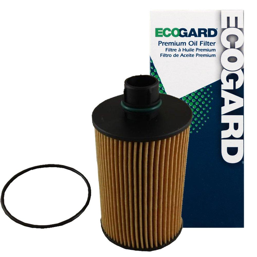 amazon com ecogard x10232 oil filter automotive