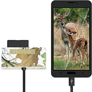 Trailwatcher - Lector de Tarjetas SD para Smartphone Android, tabletas, Micro USB, OTG, teléfono Inteligente para ...