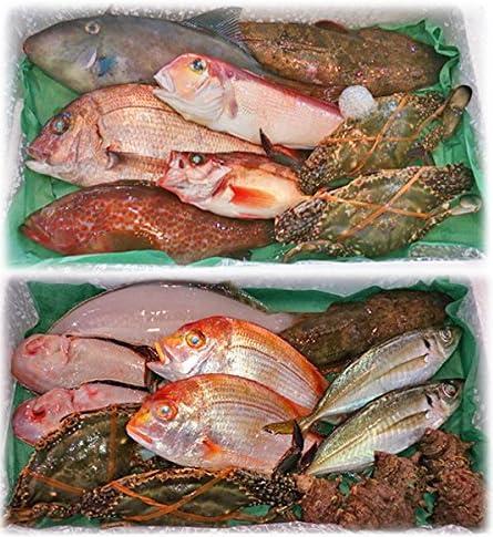 魚水島「厳選」日本海の鮮魚セット海におまかせ大漁箱