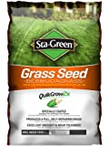 Bermuda Grass Seed Sta-Green 15 lb 15,000-sq ft overseeding 7,500-sq ft New Seed