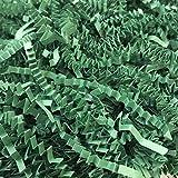 Black Cat Avenue 1 LB Green Crinkle Cut Paper Shred Filler For Gift Wrap and Basket Filler