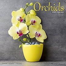 Orchids Calendar 2019