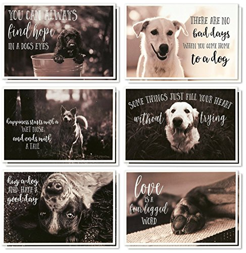 (36 Pack Motivational/Inspirational Quote Greeting Cards - Bulk Box Set Note Cards- 6 Assorted Dog Designs - Blank Inside - Envelopes Included, 4 x 6 Inches)