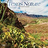 Texas Nature 2019 12 x 12 Inch Monthly Square Wall Calendar with Foil Stamped Cover, USA United States of America Southwest State Wilderness (Multilingual Edition)