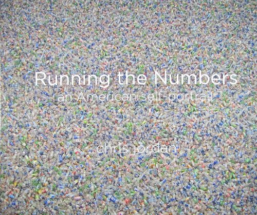 Running the Numbers: An American Self-Portrait (Running Numbers compare prices)