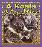 A Koala Is Not a Bear!, Bobbie Kalman and Hannelore Sotzek, 0865057397