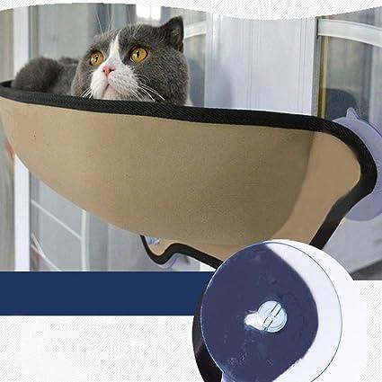 Amazon.com   Cat Window Bed b7edff93bf
