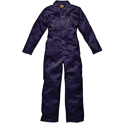 WD4839, Combinaison de Travail Homme, Bleu (Royal), Small (Taille Fabricant: 36UK/40FR)Dickies