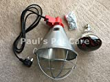 Infrared Radiant Heat Lamp & Red Bulb High Low Switch Poultry Chickens Chicks