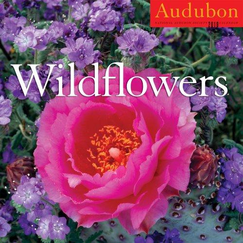 - Audubon Wildflowers Calendar 2010