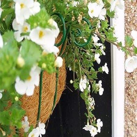 14//16 pulgadas Cesta de flores colgantes para la decoraci/ón del jard/ín del hogar maceta con soporte de planta de revestimiento de fibra de coco maceta de soportes para colgar en la pared