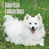 2018 American Eskimo Dog Wall Calendar 2018 DELUXE {jg} Best Holiday Gift Ideas - Great for mom, dad, sister, brother, grandparents, grandchildren, grandma, gay, lgbtq.
