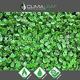 Geranium Street Floral 10 Count, Artificial UV Light Green Hedge Mat, 20'' L X 20'' W or 2.5 sq. ft.