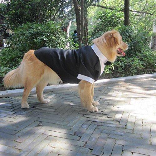 Evursua Large Dog Tuxedo Wedding Party Suit,Dog Costumes Large Dogs Golden Retriever Samo Bulldogs,Gentleman Dog Attire Bowite (black, XL) by Evursua (Image #4)