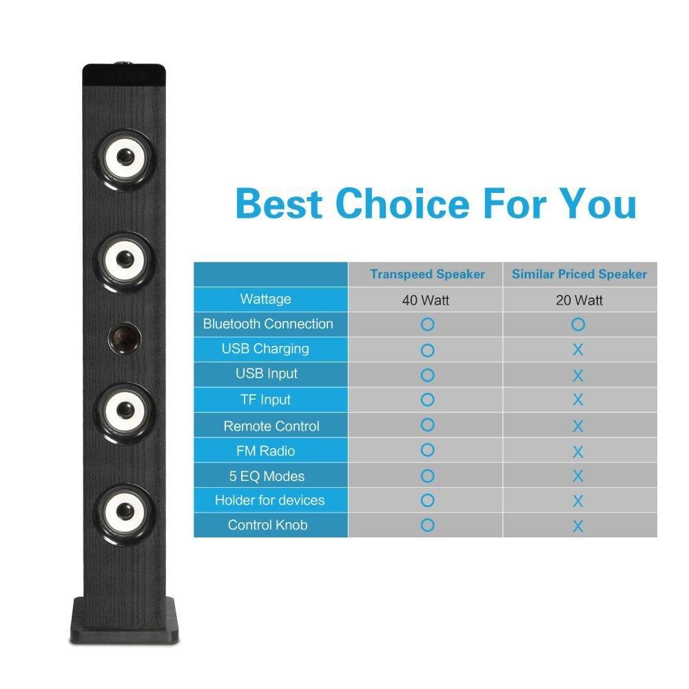 Amazon.com: Floorstanding Speaker with subwoofer, TRANPSEED 2.1 ...