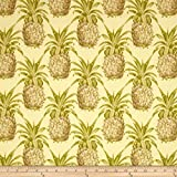 Waverly 0404164 Sun N Shade Pineapple Grove Natural Outdoor Fabric by the Yard