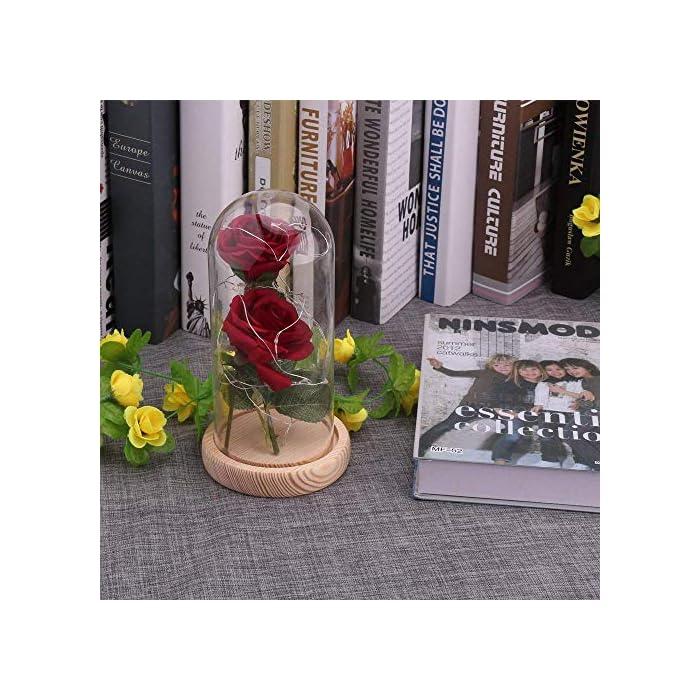 """61E7hf%2B4XjL ♥ """"KIT DE ROSA ROJA """"BEAUTY AND THE BEAST"""": Incluye 2 piezas de Red Silk Rose, 20 Leds Strip Light con A Glass Dome y A Wooden Base, crea un ambiente romántico para los amantes. ♥ROSA BRILLANTE EN BÓVEDA DE CRISTAL: Altura 18cm, Diámetro 8.5cm. Espesor de vidrio de 0.23cm. Con el paquete confiable. Por favor, tenga la seguridad de comprar. También puede cortar y doblar la longitud de la rosa según su necesidad. E insértelo en el pequeño orificio de la base de madera. ♥ROSA DE SEDA ARTIFICIAL: La cadena de 20 LED tiene una longitud de aproximadamente 2m / 6.6ft, está hecha con un fino alambre de cobre flexible que crea la forma que desee y agrega un hermoso acento decorativo. Hecho de alambre de cobre alto, flexible, IP20 a prueba de agua, duradero para uso diario."""