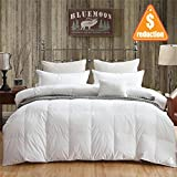 BLUE MOON 90% White Goose Down and 10% Feather Blend Filling California King/King Comforter 100% Organic Cotton Shell Down Proof-Solid Hypo-allergenic Winter Duvet -Unique Presents for family