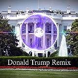 Donald Trump Remix