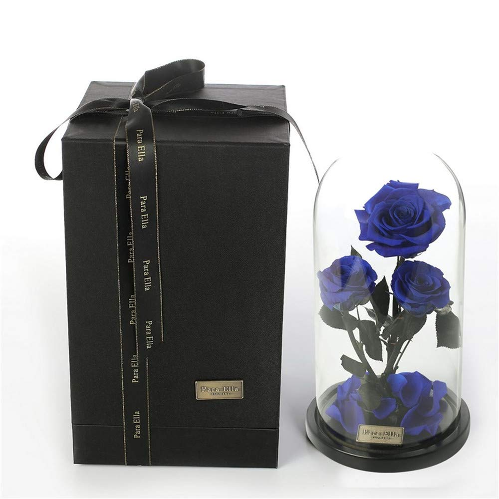 XJ&DD Fallen Petals Rose,Beauty The Beast Rose,In Glass Dome On Wooden Base Preserved Rose,100% Natural-Blue 25x12.5cm(10x5inch)