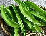 Winged Beans -Dau Rong;Tour-Poo (Psophocarpus Tetragonolobus) 50 seeds