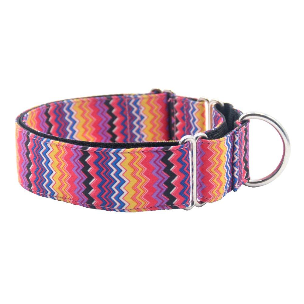 EXPAWLORER Martingale Collars for Dogs, Heavy Duty Nylon Dog Collar Large