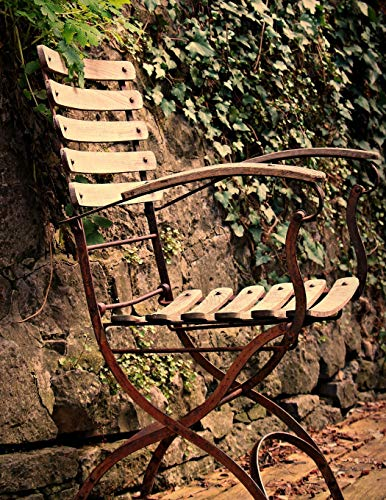 Notebook: Chair seating furniture outdoor out ivy fern garden design gardening outdoor relaxing relax peace por Wild Pages Press