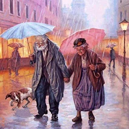 DIY 5D Diamond Painting Full Drill Craft Old Couple Kits Art Embroidery Hobby