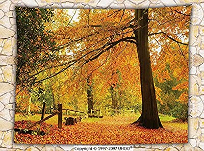 Farm House Decor Fleece Throw Blanket Autumn Fall Forest Scene with Vibrant Colors and Pale Leaves Tranquil Peace Nature Throw Orange Brown