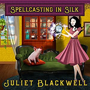 Spellcasting in Silk Audiobook